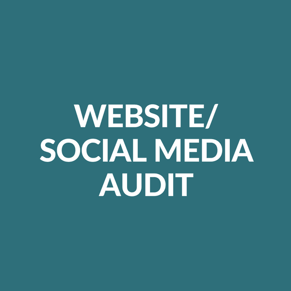 Website / Social Media Audit